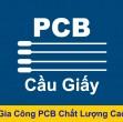 pcbcaugiay.com lừa đảo